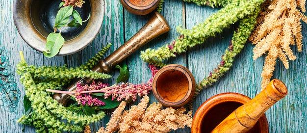 Amaranto y hierbas medicinales