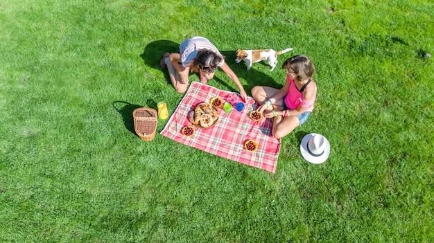 Amigas con perro haciendo un picnic en el parque, niñas sentadas en el césped y comiendo comidas saludables al aire libre, vista aérea desde arriba