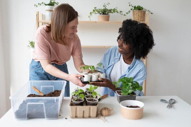 Amigos que tienen un jardín sostenible en el interior.