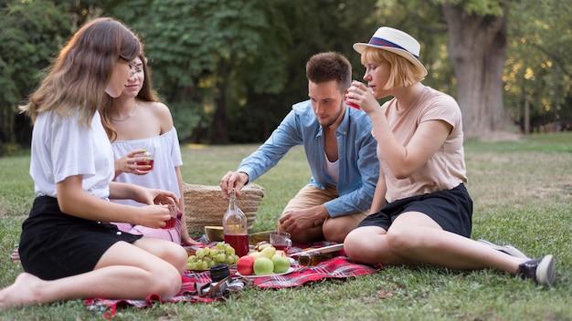 Amigos de tiro completo en un picnic juntos