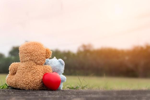 Amor por el día de san valentín: los osos de pareja se sientan en el piso y miran hacia adelante juntos con amor