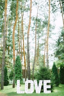 Amor texto decoración vista lateral con el bosque en el fondo