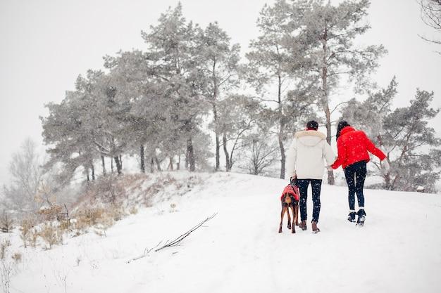 Amorosa pareja caminando en un parque de invierno