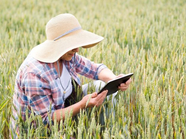 Anciana sentada en un campo de trigo mientras sostiene una tableta