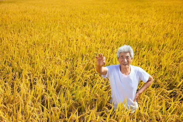 Anciano en el campo de arroz