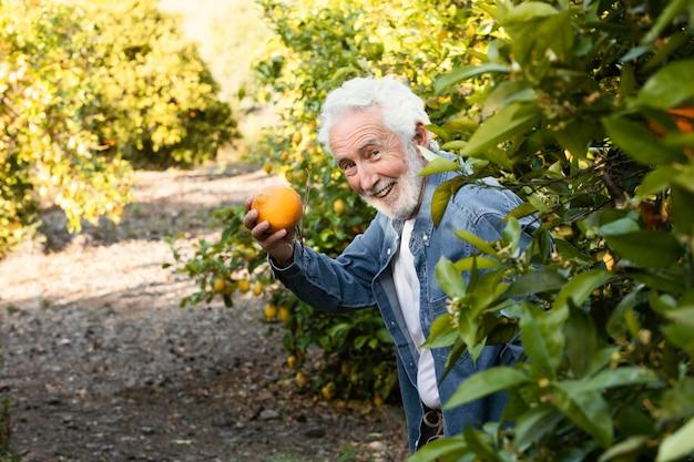 Anciano de pie junto a sus naranjos al aire libre