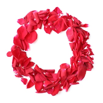 Anillo de guirnalda de pétalos de rosa roja sobre fondo blanco para aniversario, cumpleaños