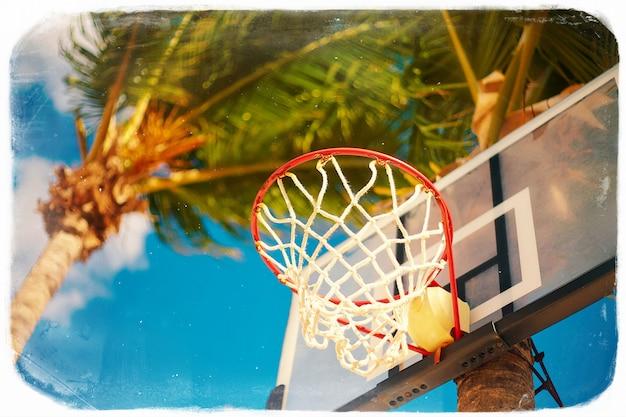 Anillo de tablero de baloncesto en día de verano en cielo azul y palmera verde en estilo retro