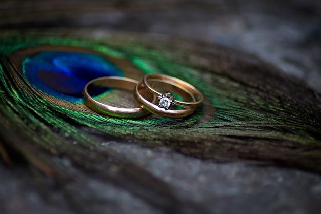 Anillos de boda en plumas de pavo real.