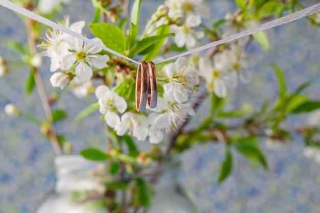 Anillos de boda en una rama. ramo primaveral de flores de cerezo