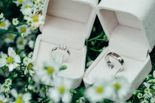 Los anillos de bodas de los pares del platino en cajas abiertas colocan en las flores blancas.