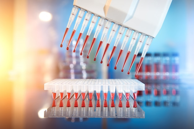 Antecedentes científicos, secuenciación y amplificación de adn.