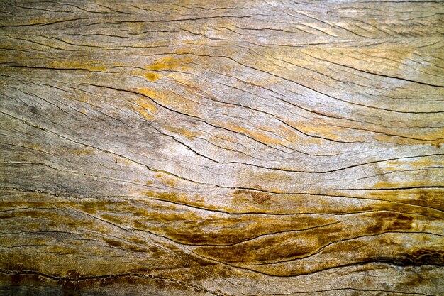 Antigua y antigua superficie de madera dura se agrietó por la luz solar lluvia