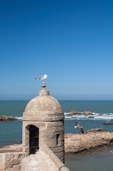 Antigua fortaleza en essaouira, marruecos