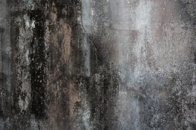 Antigua muralla de cemento.
