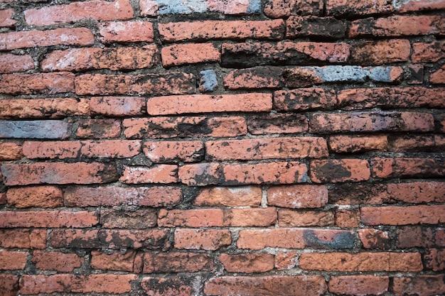 Antigua muralla hecha de ladrillo destruido por la guerra en wat chaiwatthanaram en ayutthaya tailandia