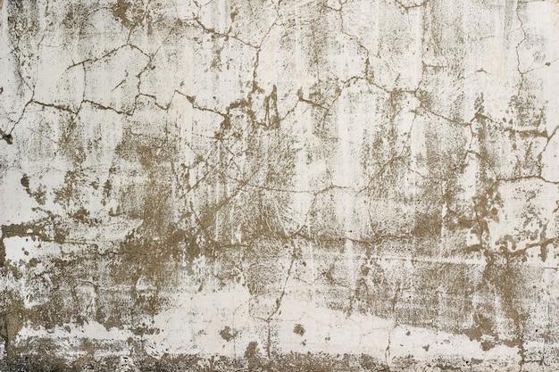 Antigua muralla en mal estado
