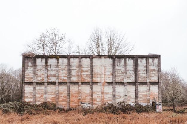 Antigua muralla sucia en un bosque rodeado de vegetación bajo un cielo nublado durante el otoño