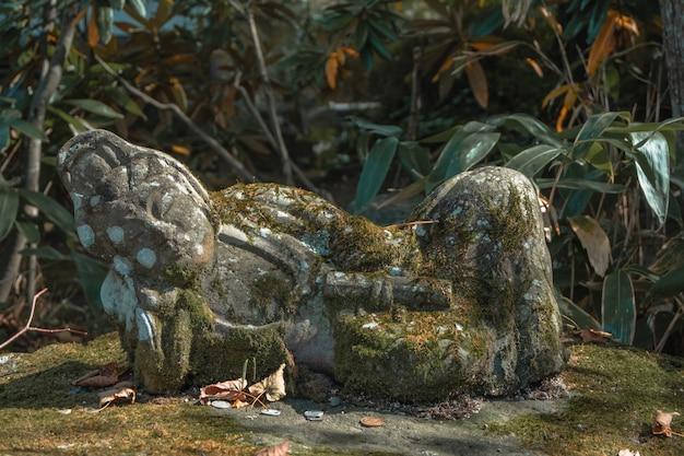 La antigua pequeña estatua de buda de piedra con mos y una moneda en el santuario o templo japonés