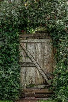 Antigua puerta de jardín, flanqueada por vid