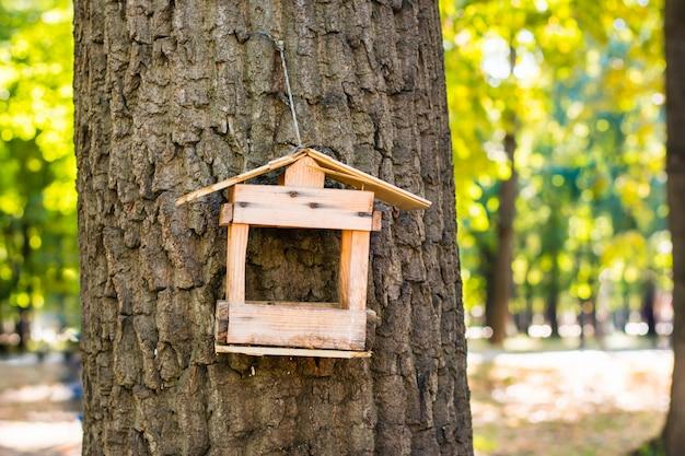 Antiguo alimentador de aves roto en un árbol en el bosque