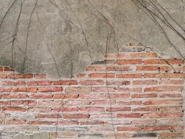 Antiguo muro de ladrillo en la antigüedad y fue dañado.