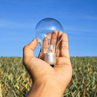 Aparatos de iluminación bombilla de energía transparente mano