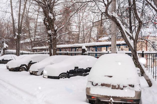 Aparcados coches cubiertos de nieve en el patio por la mañana nublada de invierno.