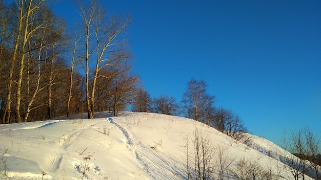 Aparcar en un día claro de invierno