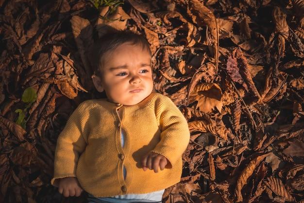Aparcar en una puesta de sol de otoño, bebé de seis meses acostado en las hojas de los árboles