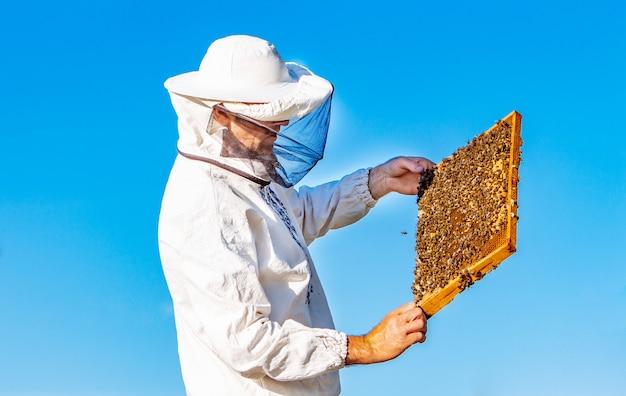 Apicultor en camiseta blanca y sombrero protector sosteniendo un marco con abejas