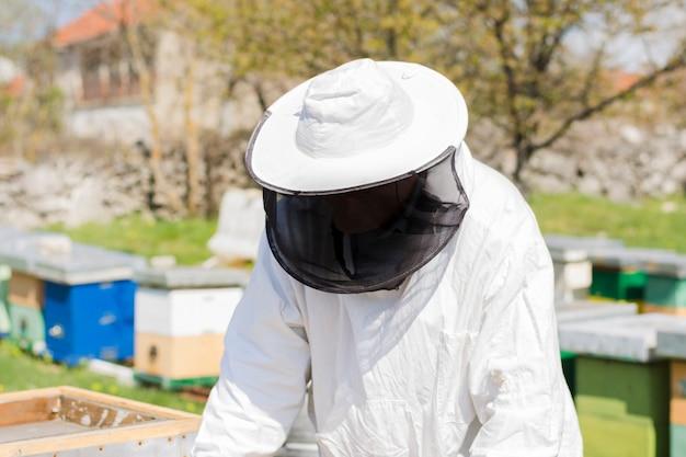 Apicultor extrayendo miel
