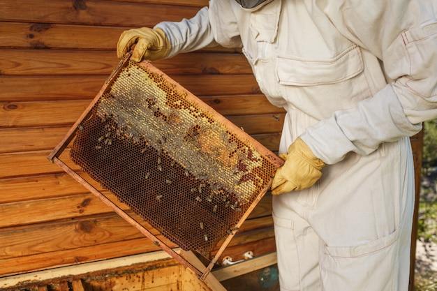 Apicultor hembra joven mantenga marco de madera con nido de abeja