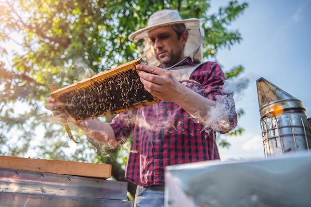 Apicultor revisando las colmenas