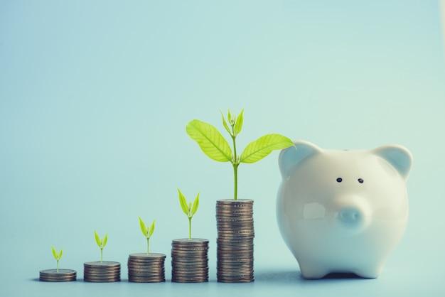 Apilando monedas de dólares y árbol verde creciendo con hucha