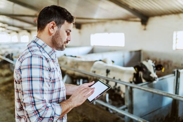 Apuesto granjero caucásico en camisa a cuadros y jeans usando tableta mientras está parado en el establo.