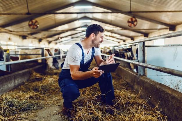 Apuesto granjero caucásico en general agachado junto a la pantorrilla, usando tableta y sonriendo. interior estable.