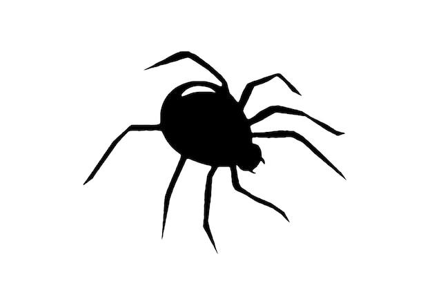 Araña negra sobre un fondo blanco, ilustración