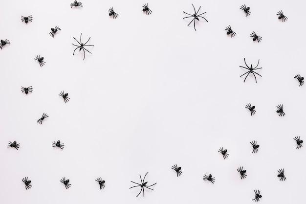 Arañas que se arrastran sobre fondo blanco