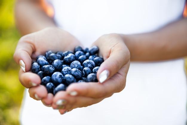 Arándanos en manos de agricultores, manos de mujeres. frutas, bayas, comida, naturaleza.
