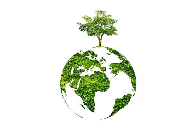 Árbol del día de la tierra en la tierra verde sobre fondo blanco aislado