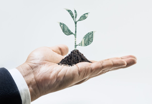 Árbol del dinero que crece a mano ideas de conceptos financieros y de inversión empresarial.
