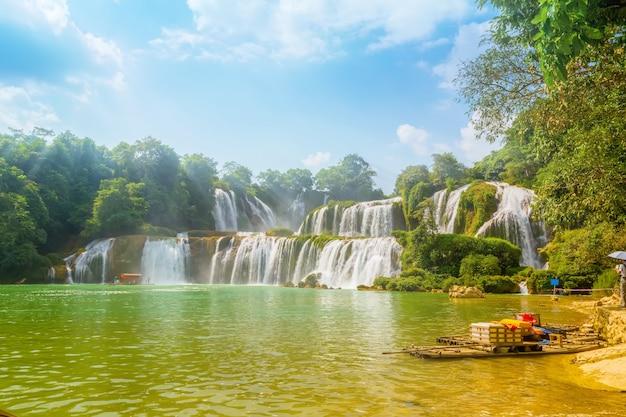 Árbol estanque belleza prohibición movimiento tropical