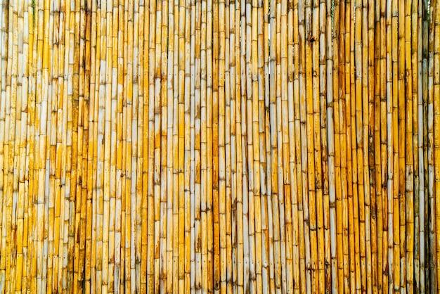 Árbol con fondo de bambú