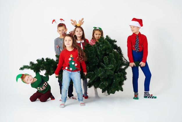 El árbol de navidad tiene que estar en nuestra casa.