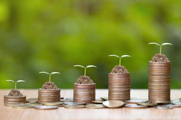 Árbol que crece en la pila de monedas de dinero.