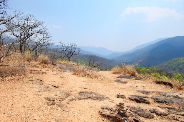 Árbol seco, el heno en la montaña tiene arena con cielo azul en el parque nacional op luang, chiang mai, t