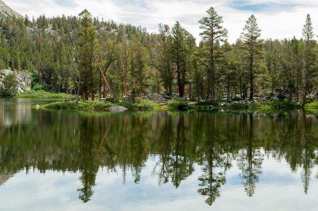 Árboles del bosque reflejado en big pine lakes, california, ee.