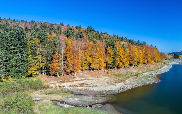 Árboles coloridos en la orilla del lago de lac de la lauch en las montañas vosges - haut-rhin, francia