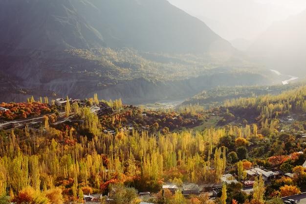Árboles de follaje colorido en bosque y cordillera en la temporada de otoño.